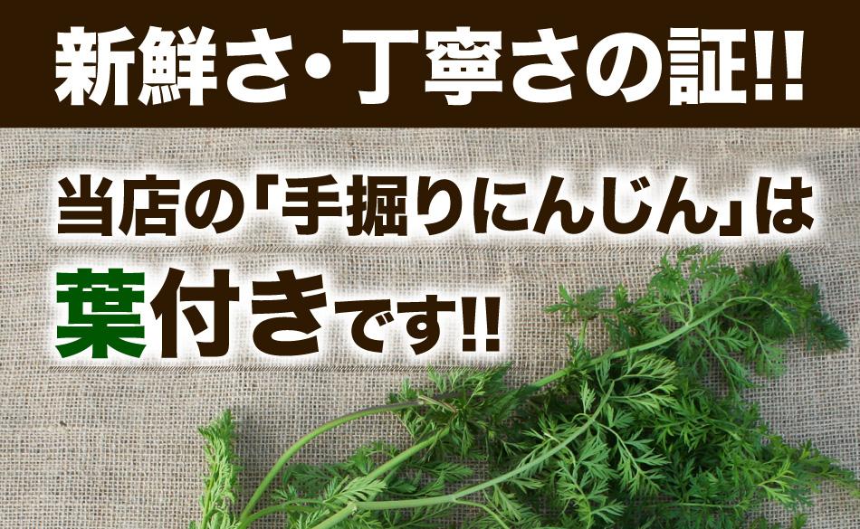 新鮮さ・丁寧さの証!!当店の手掘りにんじんは葉付きです!!