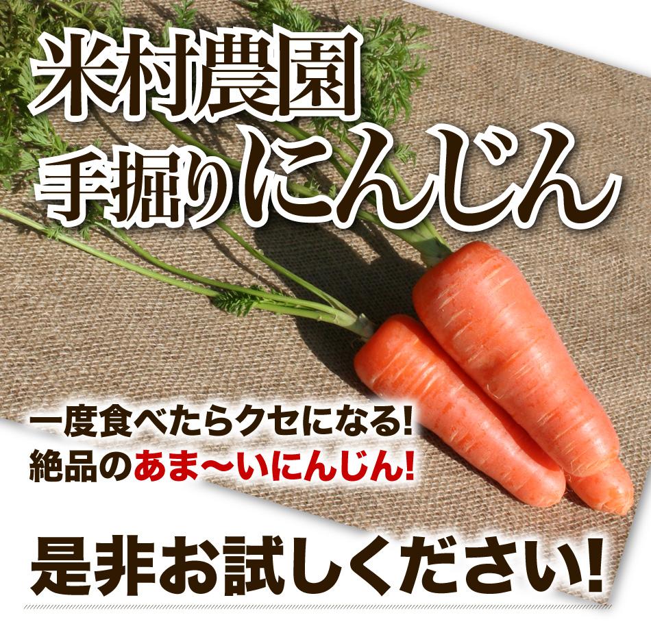 米村農園手掘りにんじん 一度食べたらクセになる!絶品のあま~いにんじん!