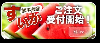 熊本県産すいか ご注文受付開始!